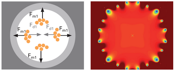 Homogeneous magnetic fields are important for magnetic bead separation