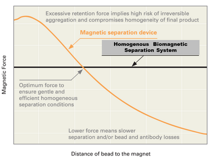 Benefits of homogeneous fields in magnetic bead separation