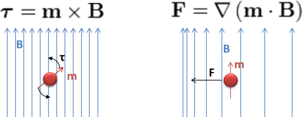 Magnetic torque and force formulas in a magnetic separation rack
