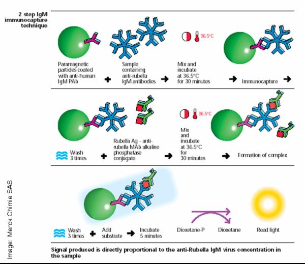 How Do Chemiluminescent Assays Work