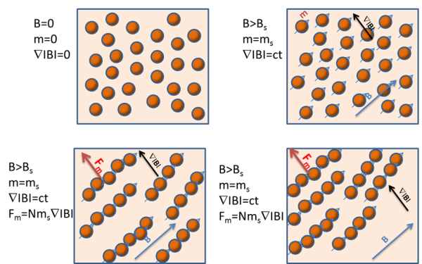 High bead concentrations lead to higher magnetic bead separation speed