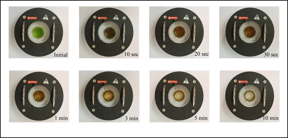 magnetophoretic separation chlorella