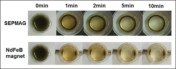 cell collection comparison between SEPMAG and NdFeb magnet