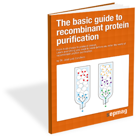 Sepmag_Portada 3D_Protein Purification.png
