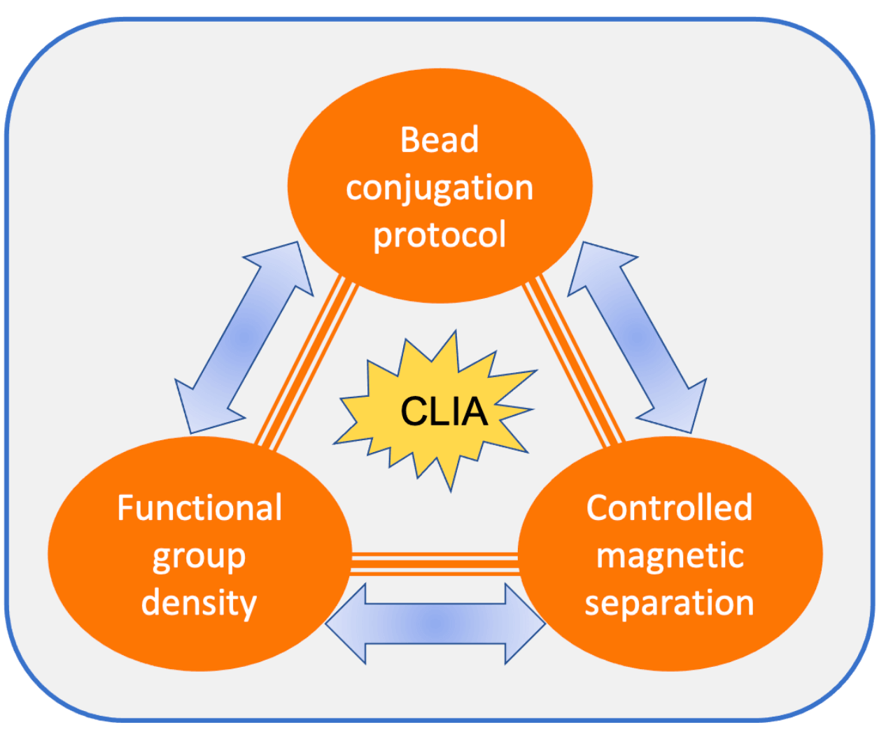 Guide for successful magnetic bead conjugation