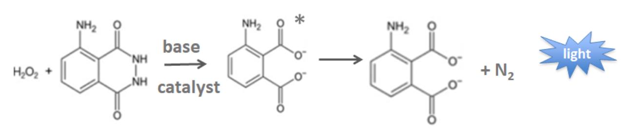Overview on Chemiluminescent immunoassay 2